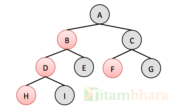 Binary_tree_ritambhara